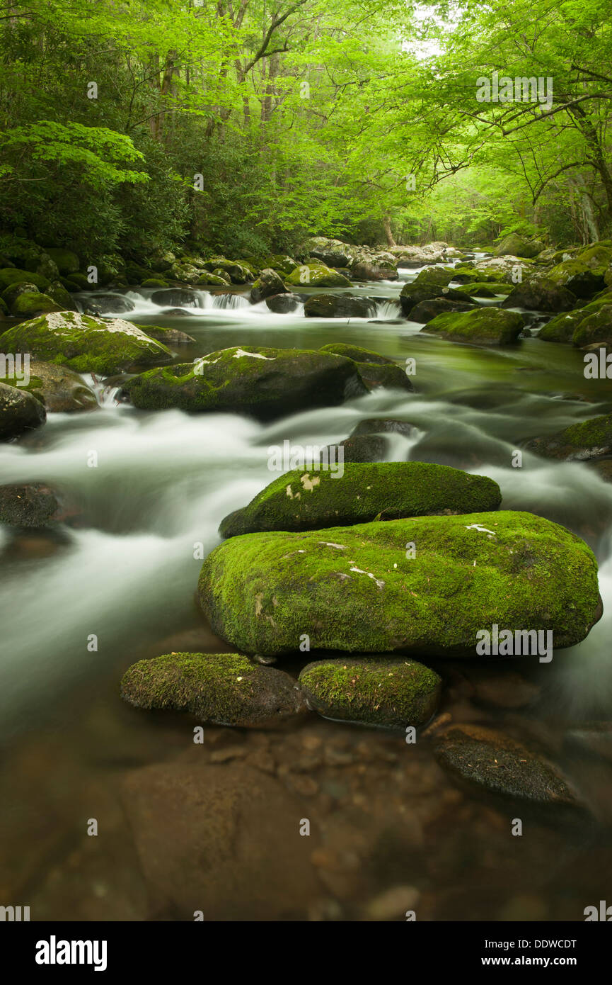 Swiftly Moving Water - Stock Image