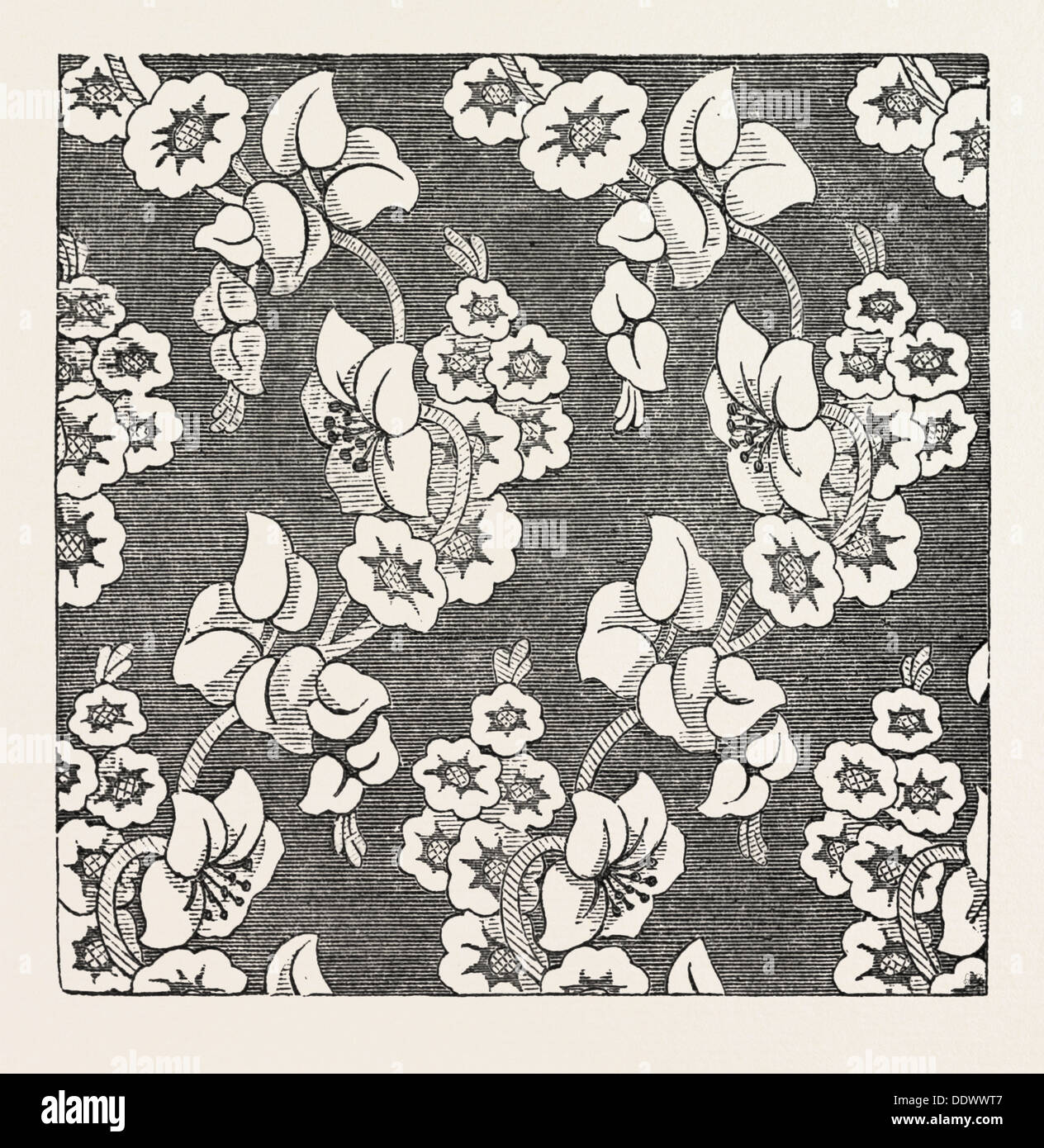 DAMASK PATTERN, BY SHEPHARD AND CO., HALIFAX - Stock Image