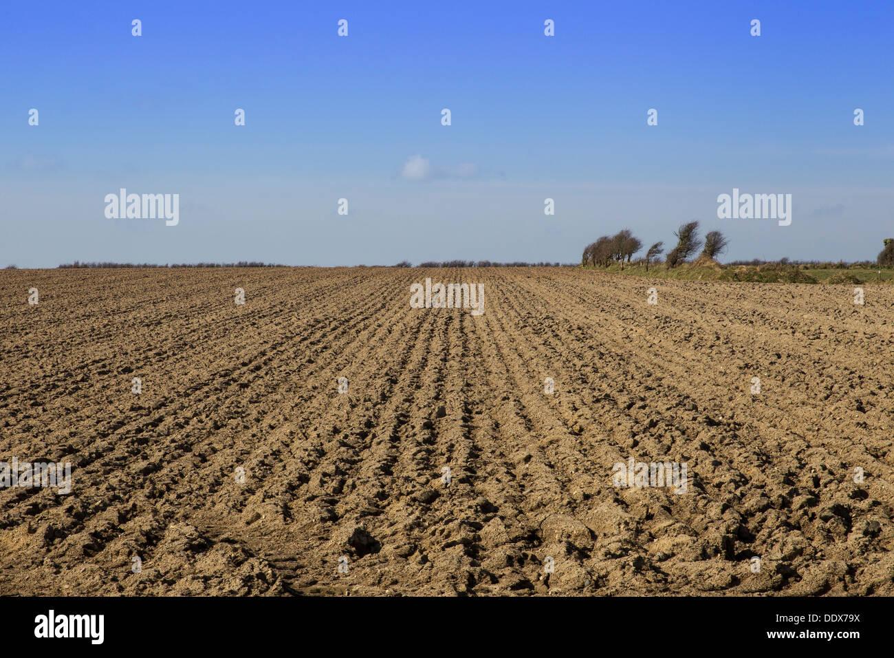 tilled soil - Stock Image