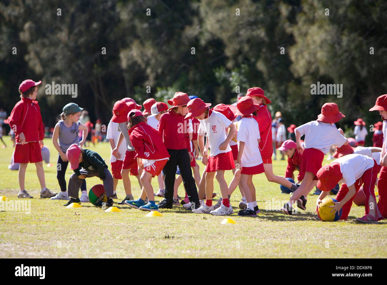group of sydney primary school children playing sport and activities,avalon,sydney - Stock Image