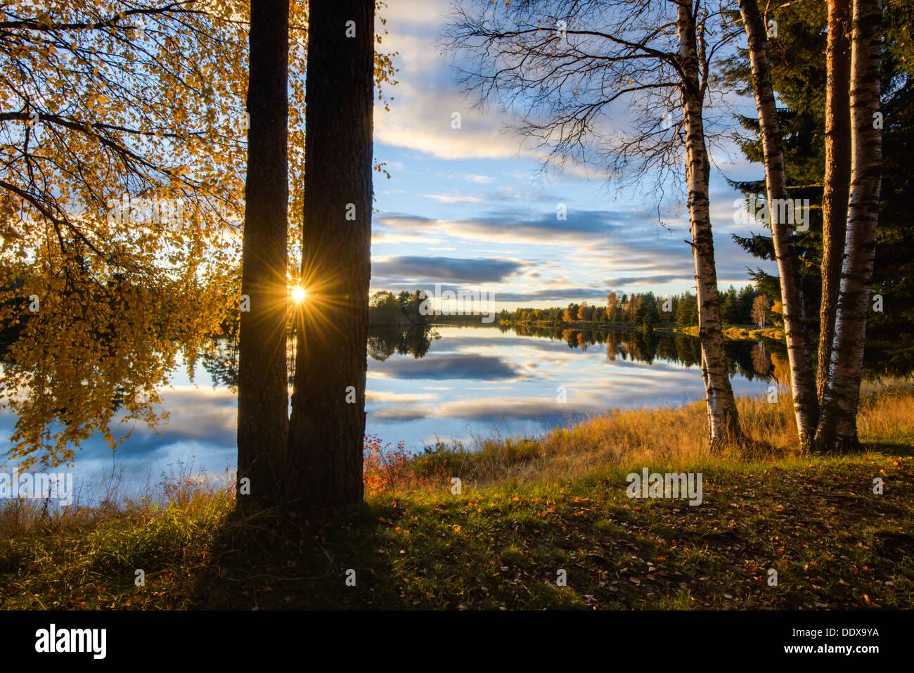 Rural scene at sunset, Fänforsen, Dalarna, Sweden - Stock Image