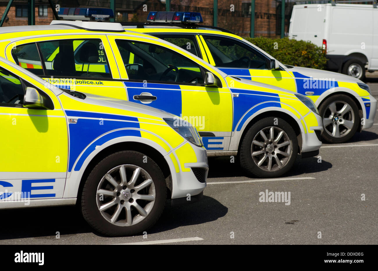 Police cars lined up in a car park, showing vivid fluorescent  yellow and blue markings. - Stock Image