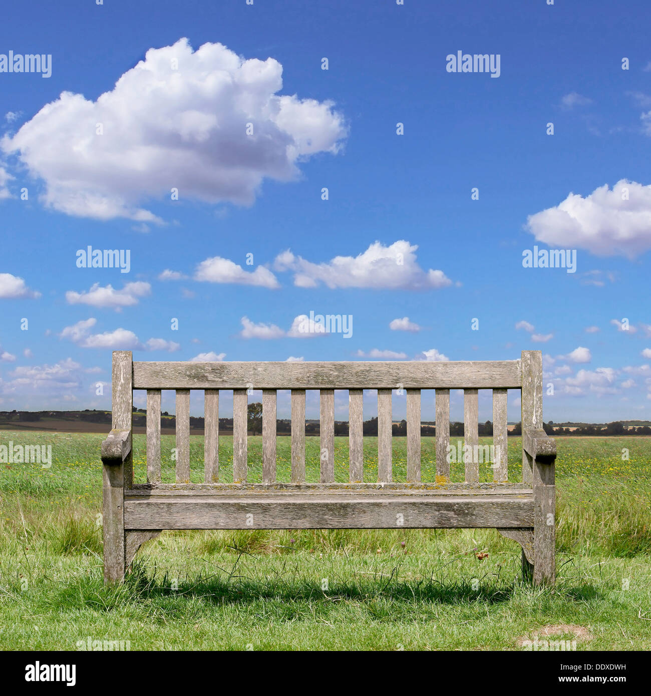 A Wooden Park Bench with Grass and Blue Sky - Stock Image