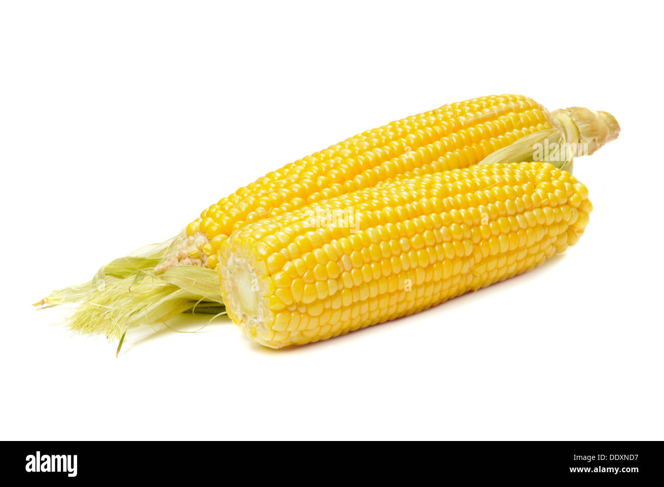 Ear of corn isolated on a white background - Stock Image