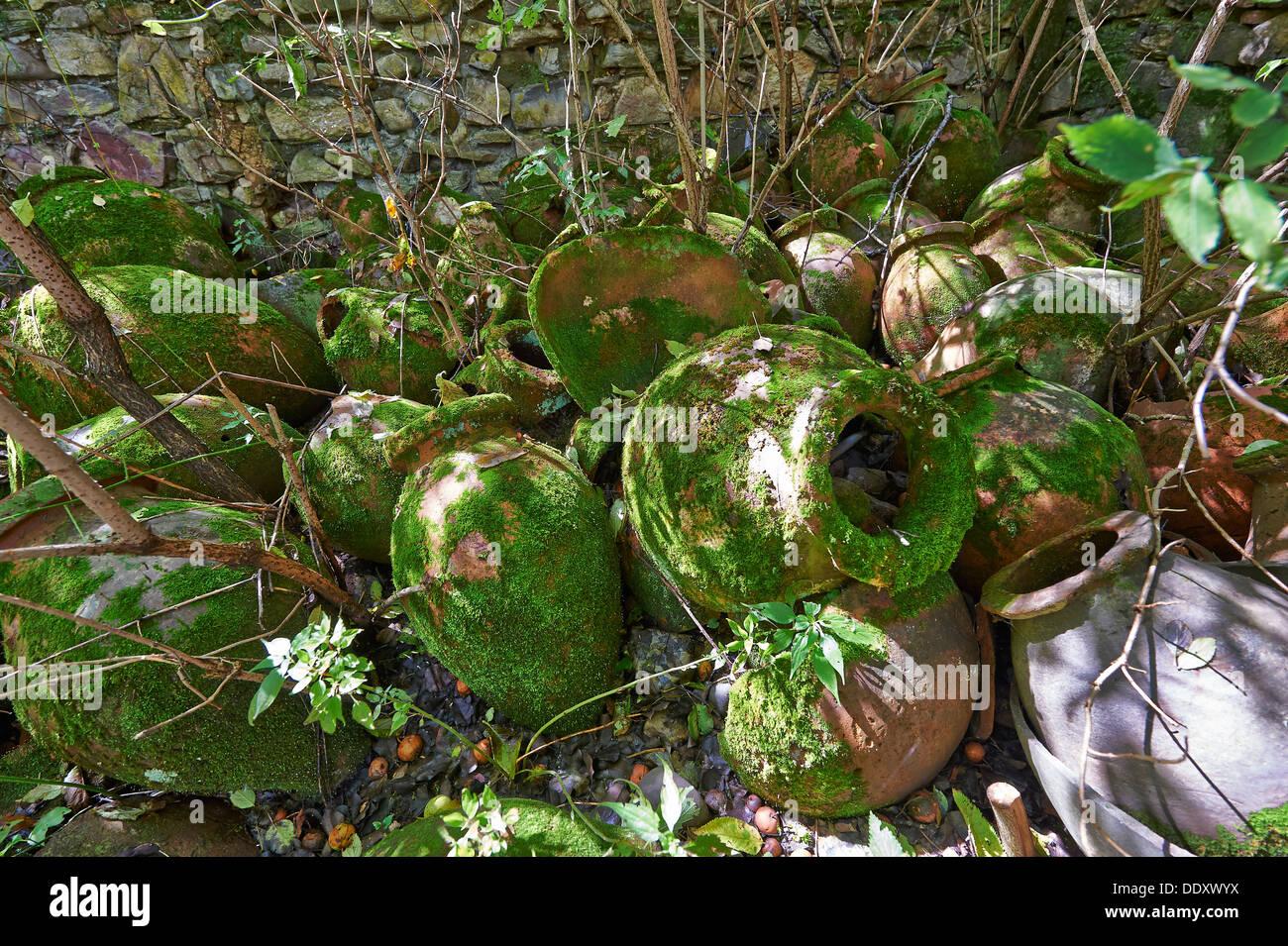 old stoneware amphorae formerly used for wine production, Telavi, Georgia - Stock Image