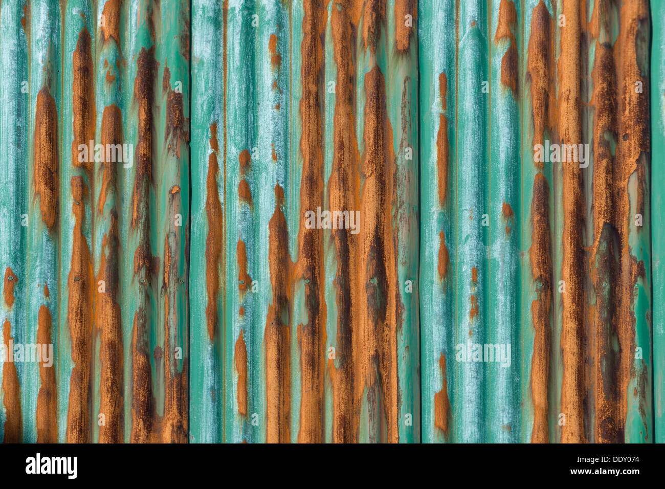 Rusty, green-painted corrugated iron wall - Stock Image
