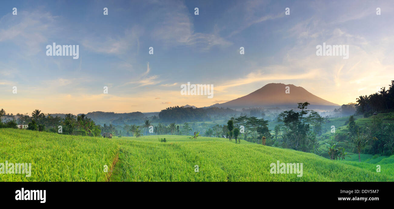 Indonesia, Bali, Sidemen Valley, Iseh, Rice Fields and Gunung Agung Volcano - Stock Image