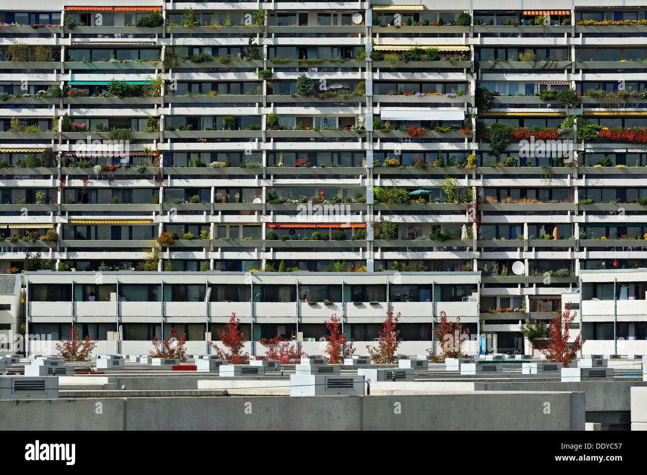 Concrete balconies with plants in the former Olympic Village, Munich, Bavaria - Stock Image