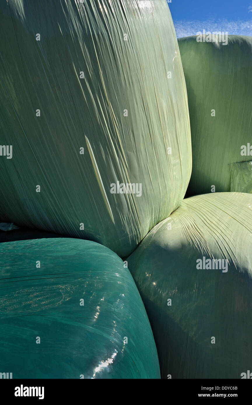 Hay bales wrapped in green plastic sheeting, Schaeftlarn, Bavaria - Stock Image