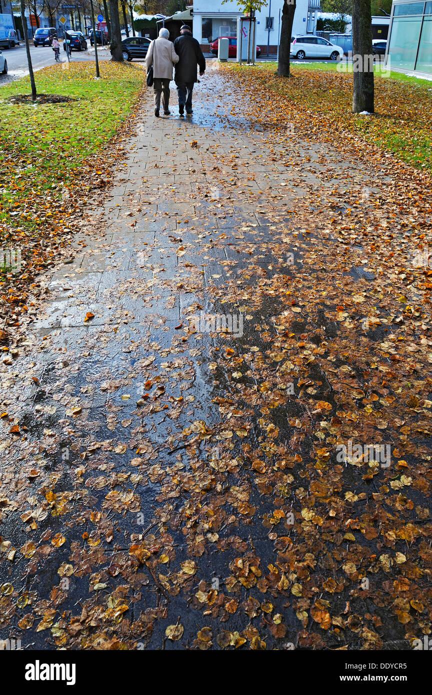Wet autumn foliage on a sidewalk, Munich, Bavaria - Stock Image