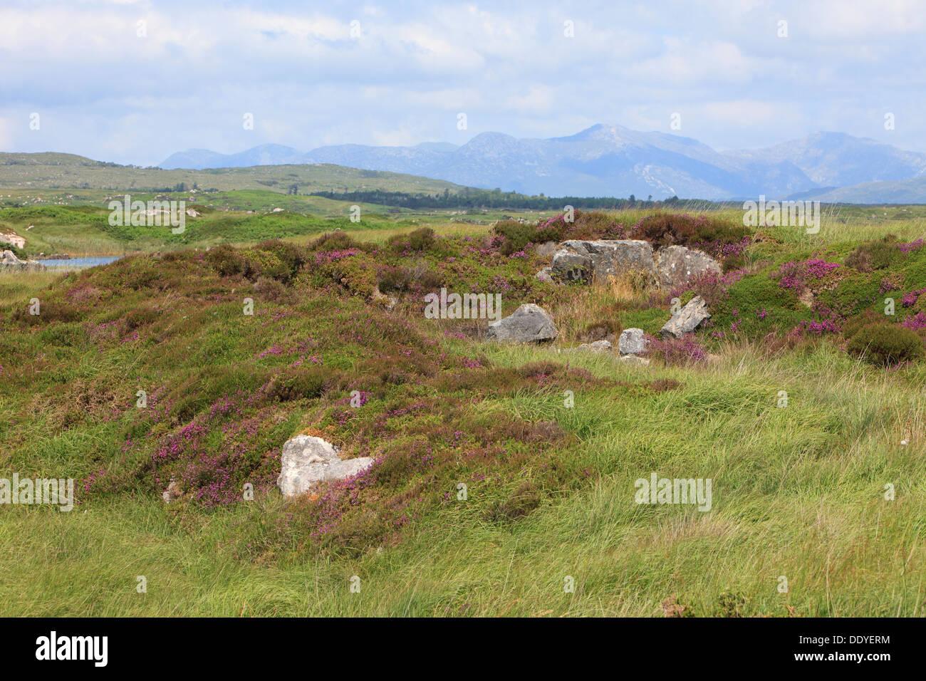 The Twelve Bens in the Connemara, Ireland - Stock Image