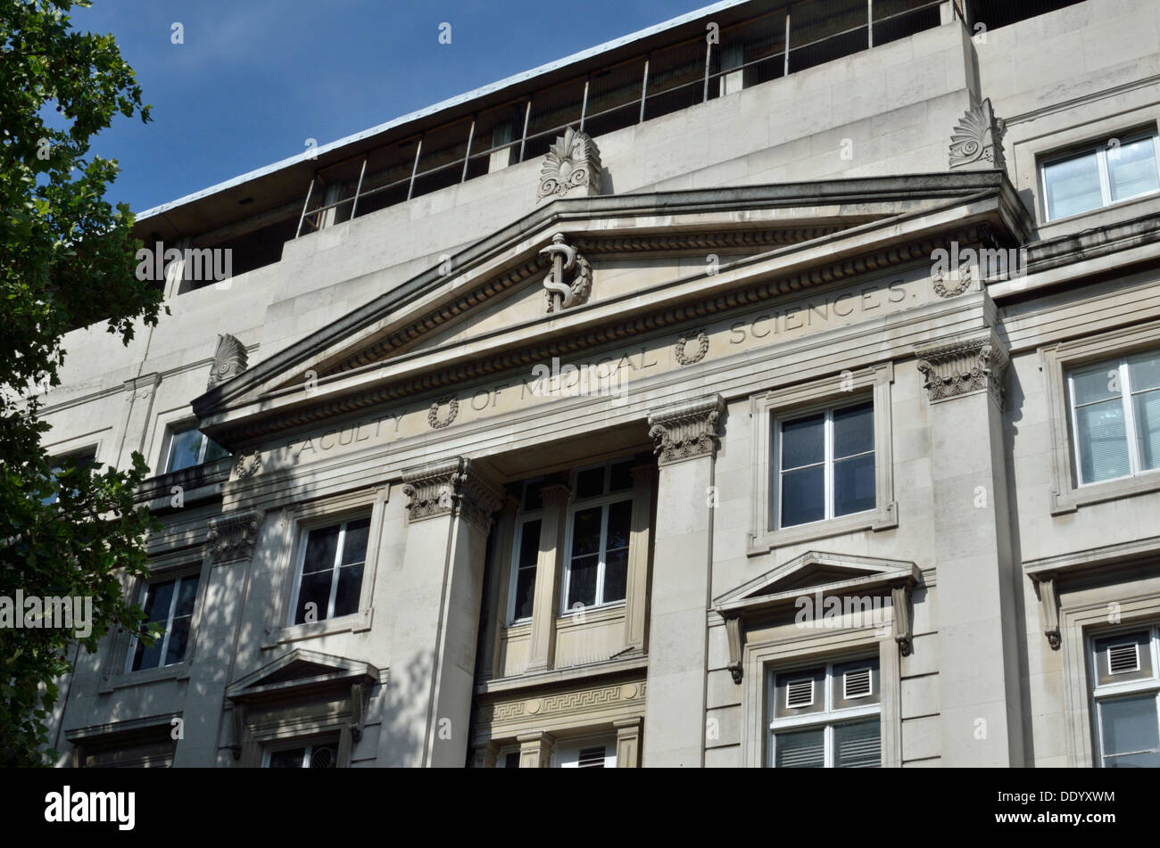 Faculty of Medical Sciences, University College London (ULU), Gower ...