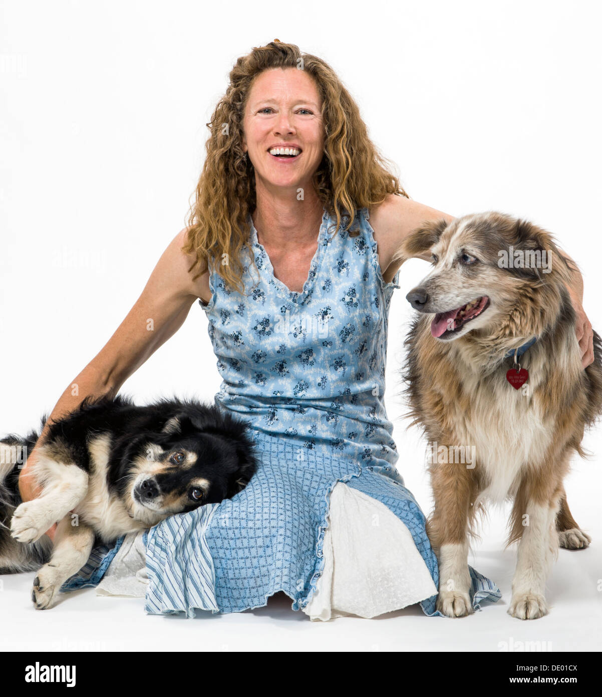 Studio photograph of attractive woman with two pet dogs, a Border Collie mix and Australian Shepherd mix - Stock Image