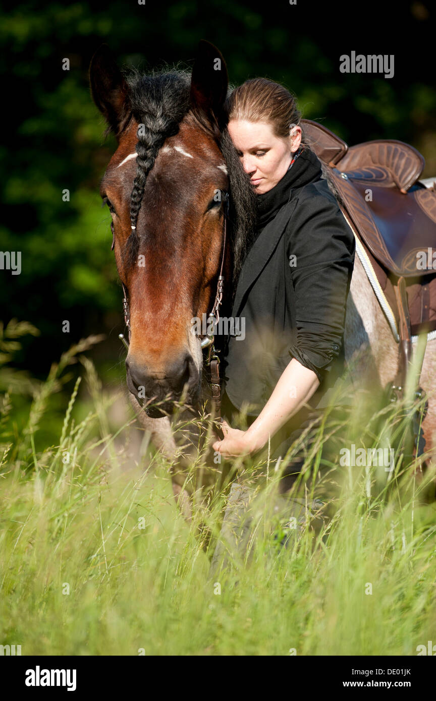 Woman with a Belgian Draft Horse in a meadow Stock Photo