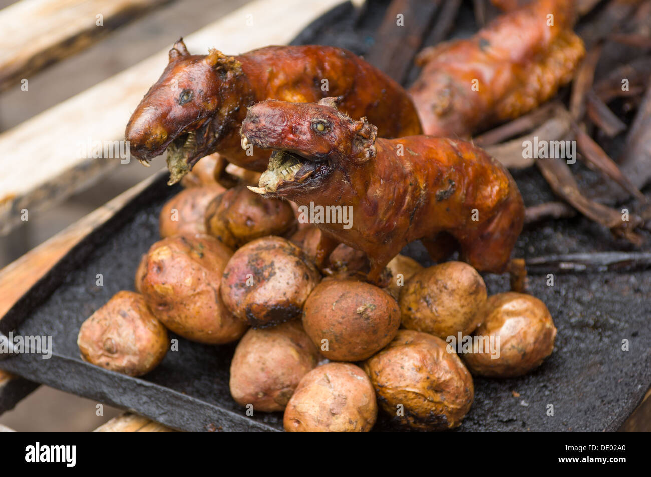 Food Sale: Baked Guinea Pigs (Cavia Porcellus) For Sale For Food