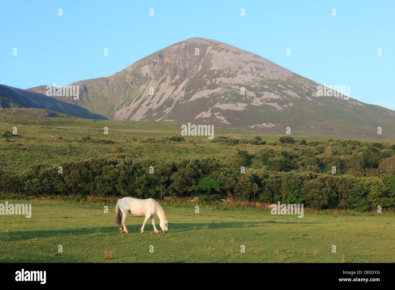 Croagh Patrick (Saint Patrick's Mountain) in county Mayo, Ireland Stock Photo