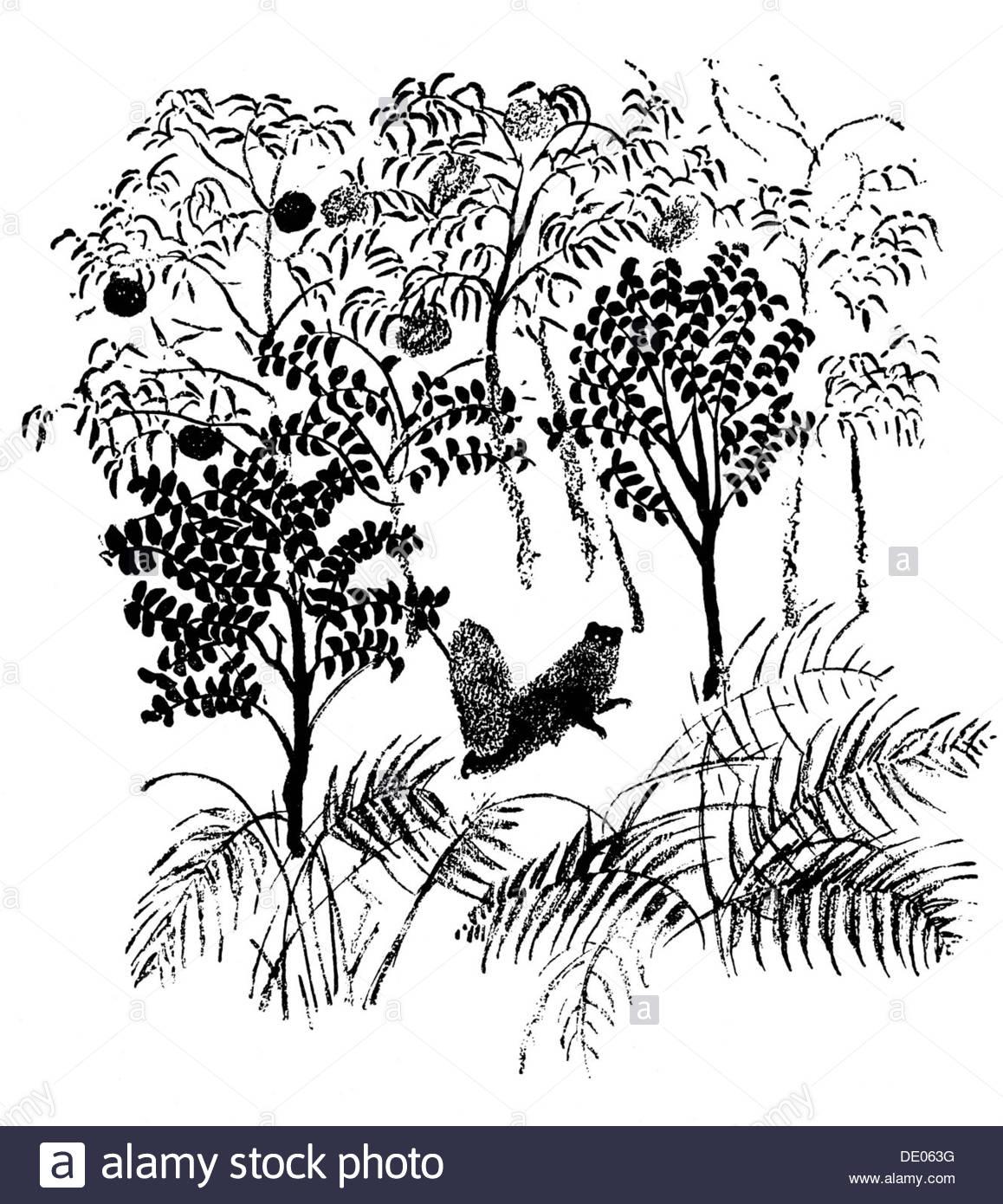 illustration from the book rikki tikki tavi by rudyard kipling 1934