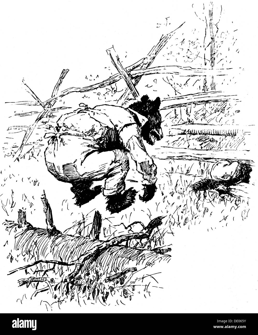 Illustration from the book The Complete Tales of Uncle Remus, by Joel Chandler Harris, 1895.  Artist: AB Frost - Stock Image