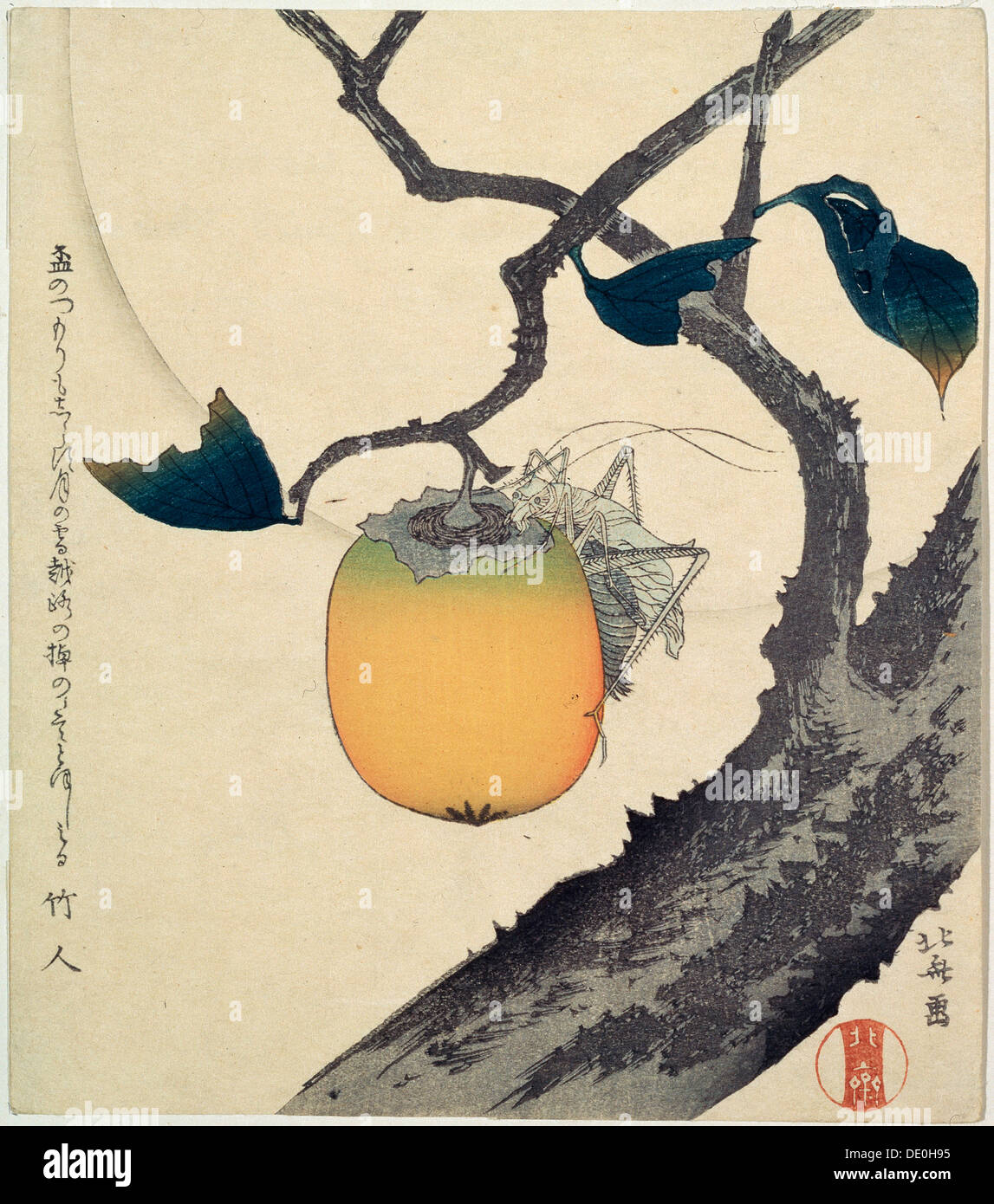 'Moon, Persimmon and Grasshopper', 1807.  Artist: Hokusai - Stock Image