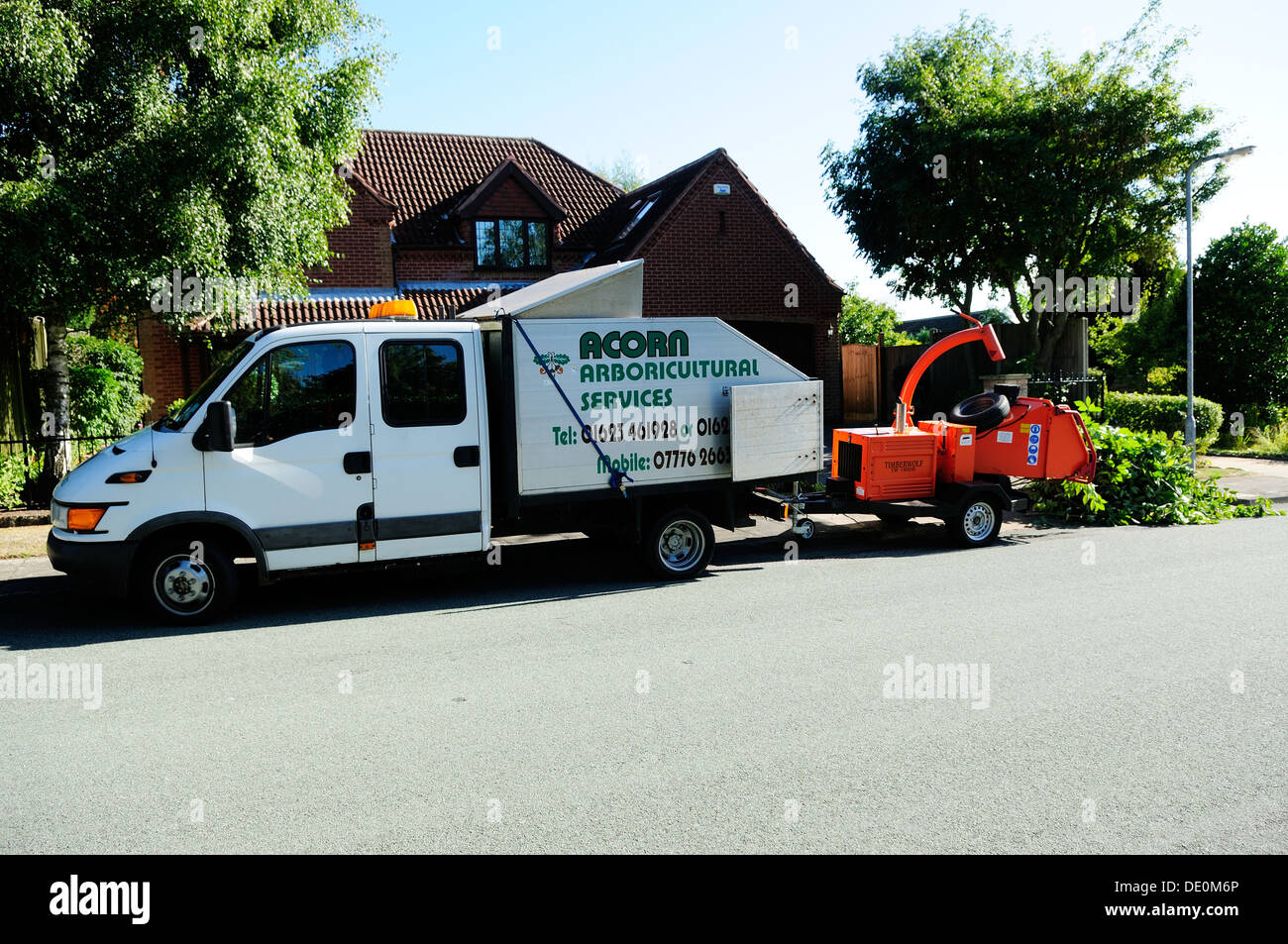 Aboricultral Tree Services. - Stock Image
