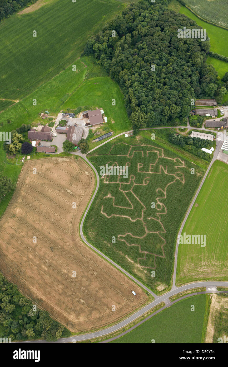 Aerial view, maze in a maize field, Salm-Cappenberg, Ruhr Area, North Rhine-Westphalia - Stock Image