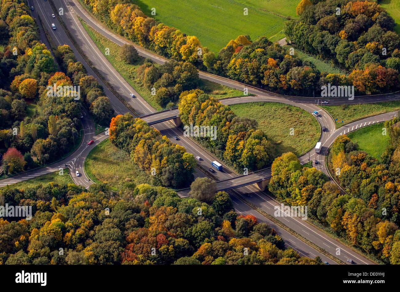 Aerial view, B224 highway exit, autumn, Gelsenkirchen, Ruhr region, North Rhine-Westphalia - Stock Image