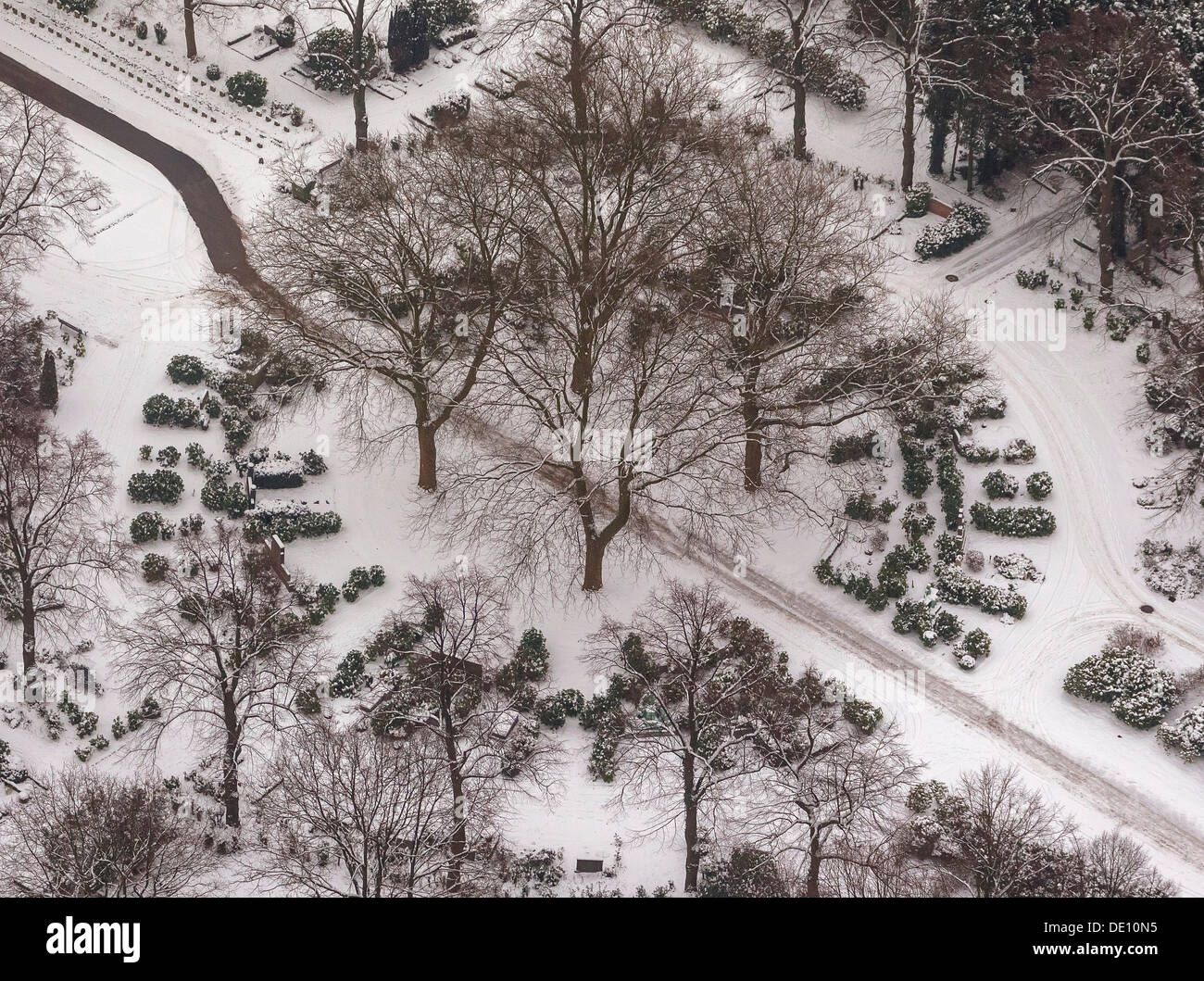 Aerial view, Garden Cemetery, cremation graves under the trees in winter Stock Photo