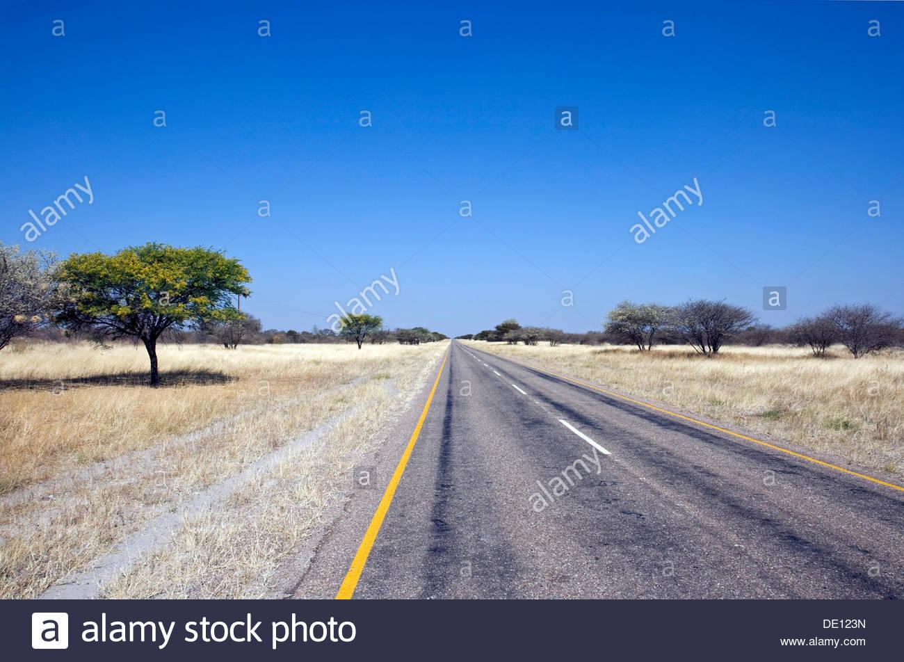 Straight road leading to the horizon, Botswana, Africa Stock Photo
