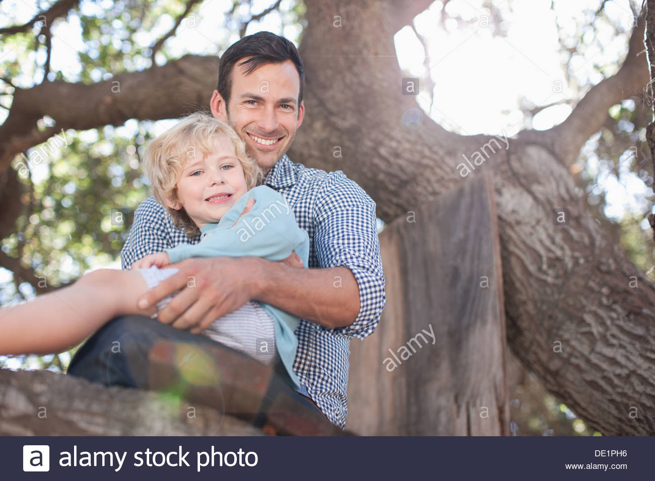 Father and son sitting in tree - Stock Image