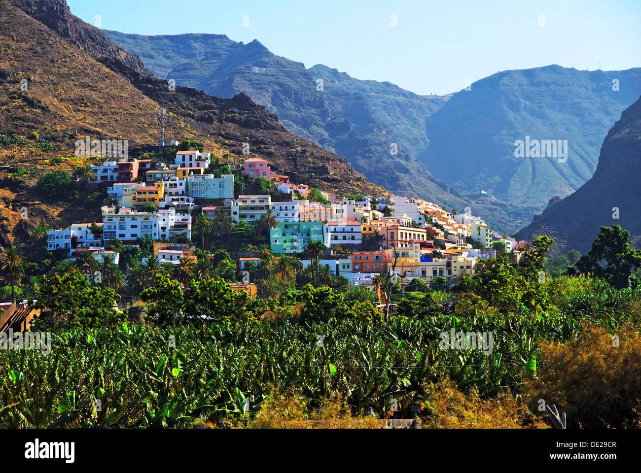 Village of La Calera and a banana plantation, Fei banana (Musa troglodytarum), Valle de Gran Rey Valley, La Gomera Stock Photo