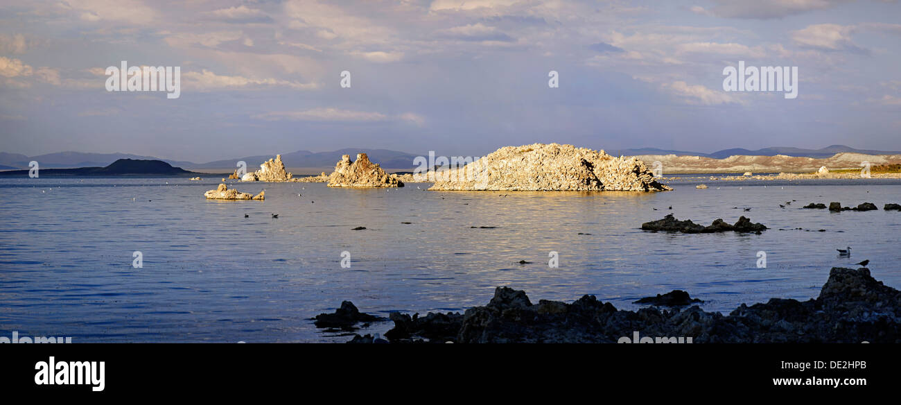 Tufa formations on Sees Mono Lake in the evening light, Mono Lake, Lee Vining, California, United States - Stock Image
