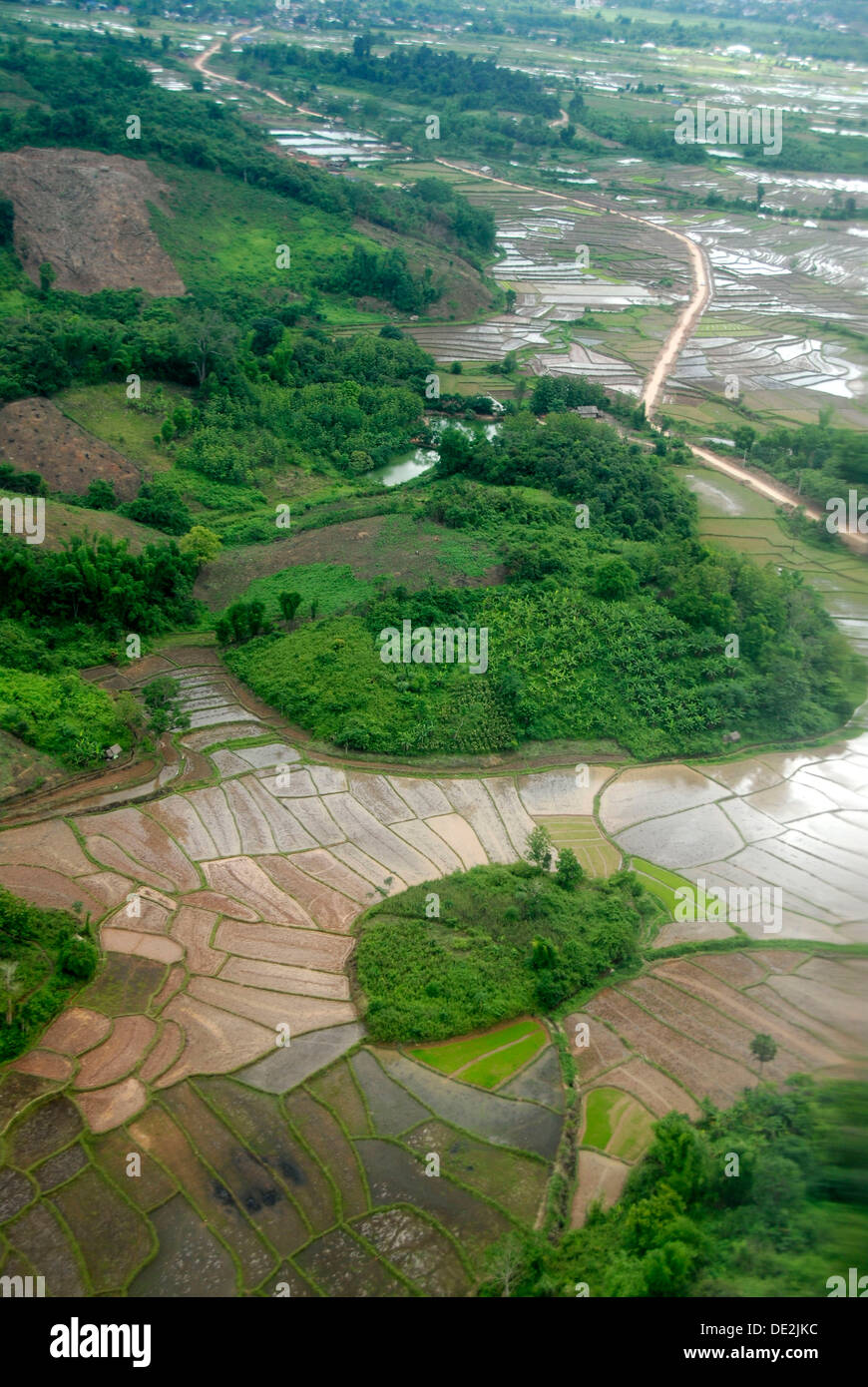View from above on rice paddies, wet rice, Oudomxay Province, Laos, Southeast Asia, Asia Stock Photo