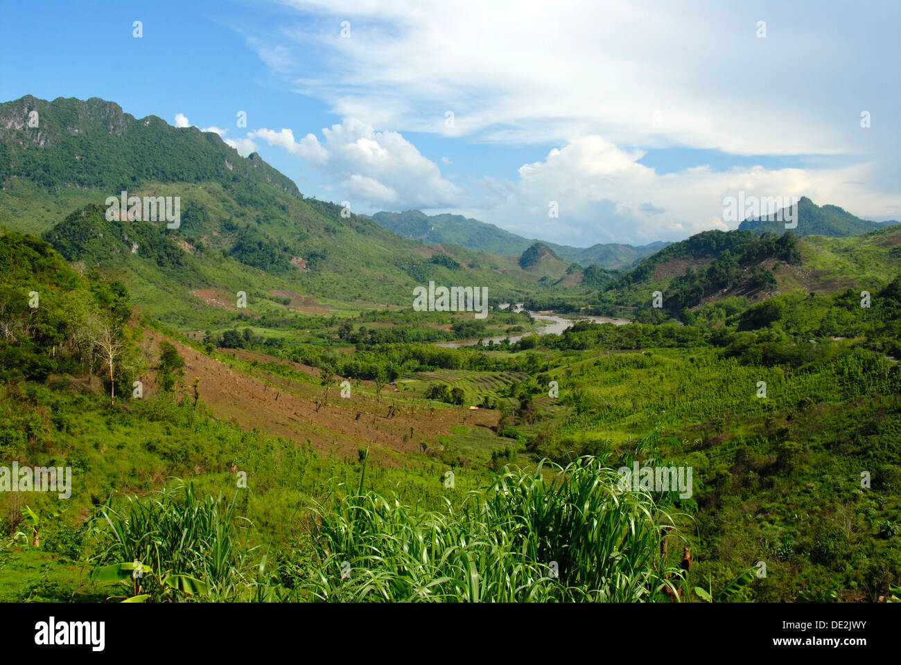 Green landscape with valleys and mountains, Nam Ou river at Ban Houay Kan, Luang Prabang province, Laos, Southeast Asia, Asia - Stock Image
