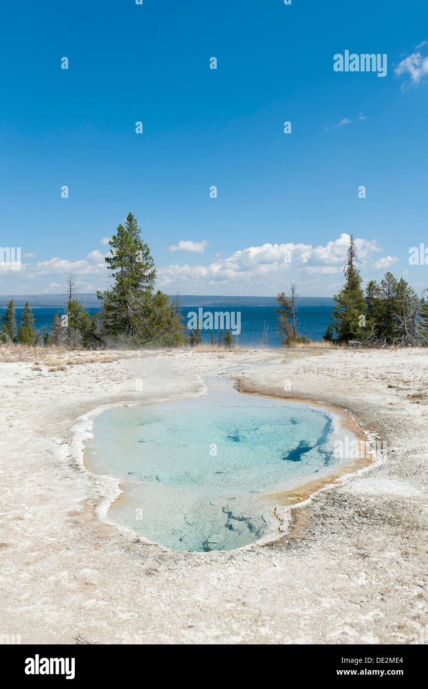 Hot spring, clear water, Perforated Pool, West Thumb, Yellowstone Lake in the background, Yellowstone National Park, Wyoming - Stock Image