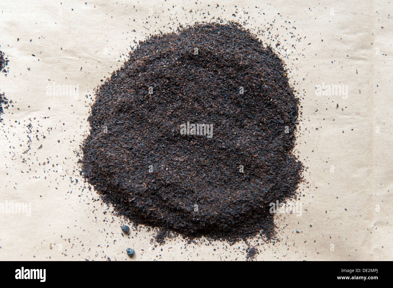 Black Tea, Dust, Ceylon, Gampola, Kandy Distrikt, Zentralprovinz, Sri Lanka Stock Photo
