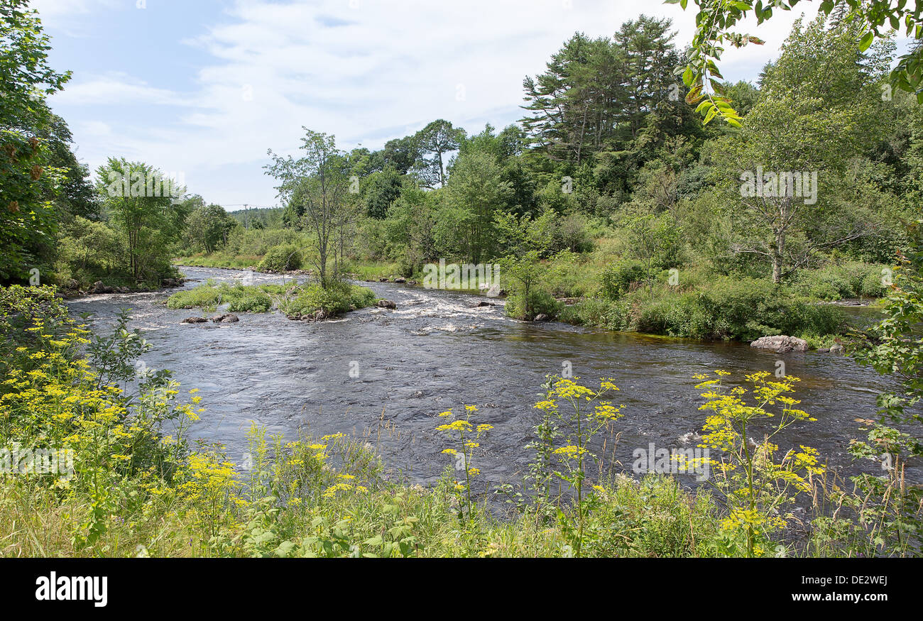Maine is referred to as Vacationland. This image of a beautiful river feeding out to the Atlantic supports that slogan. - Stock Image