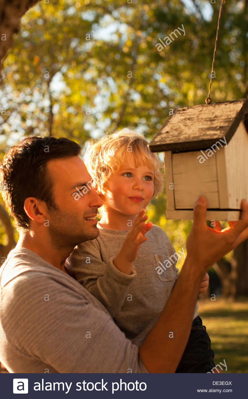 Father and son examining birdhouse - Stock Image