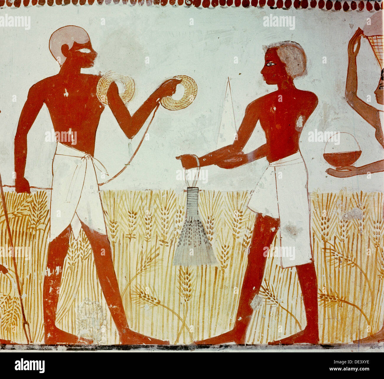 A detail of wall painting in the tomb of Menna showing the ...