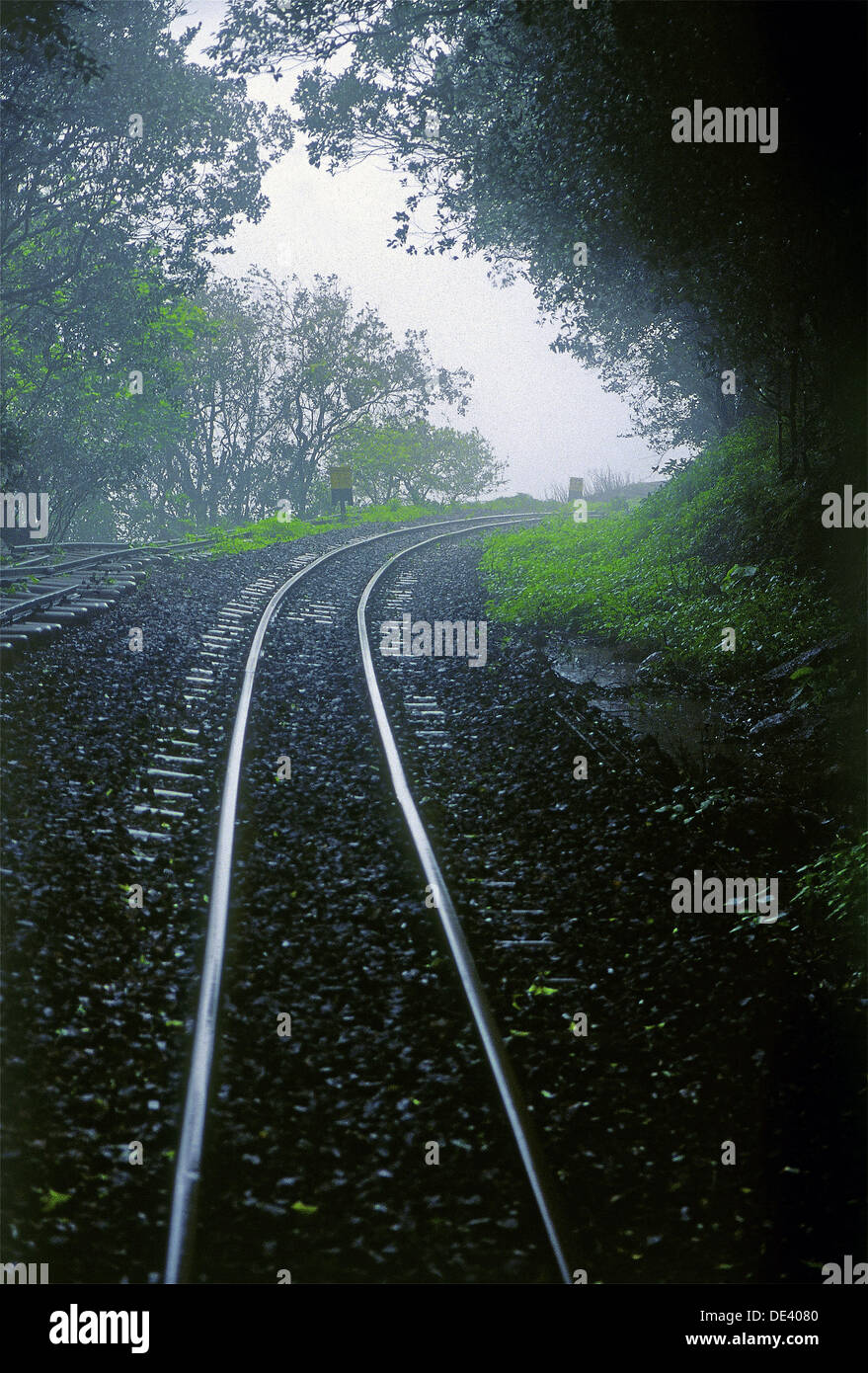A Toy train railway track leading towards the forest, its journey from Neral to Matheran. Maharashtra, India. Stock Photo