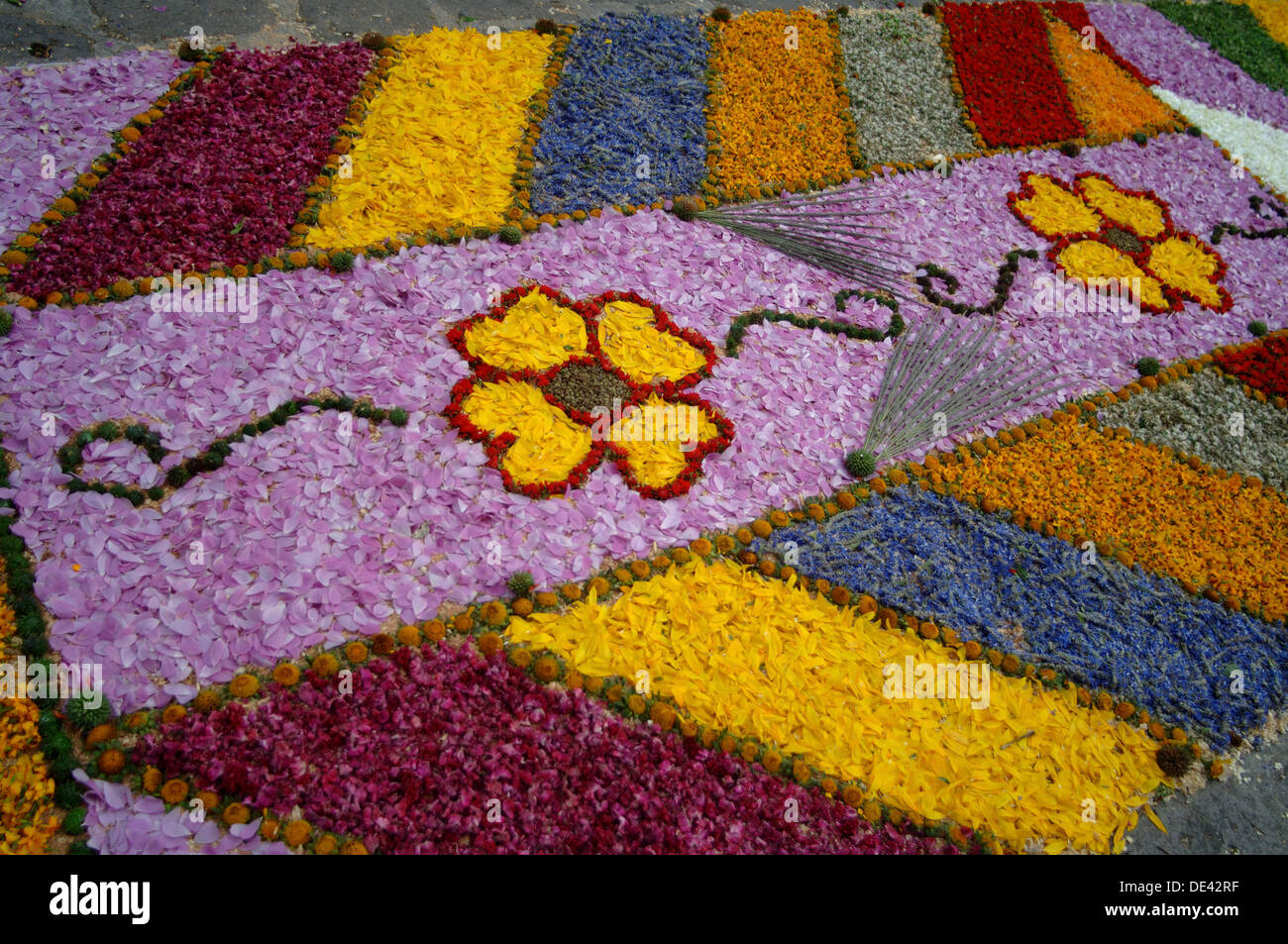 Traditional Flower Carpets Patamban Mexico Alfombra De Flores Y Stock Photo Alamy
