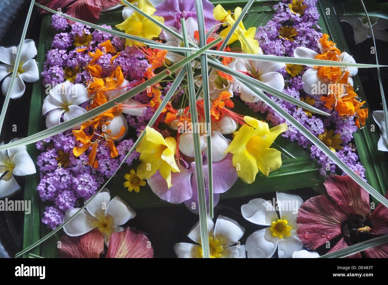 near Ubud (Bali, Indonesia): decorative flowers composition at the Ubud Hanging Gardens Hotel - Stock Image