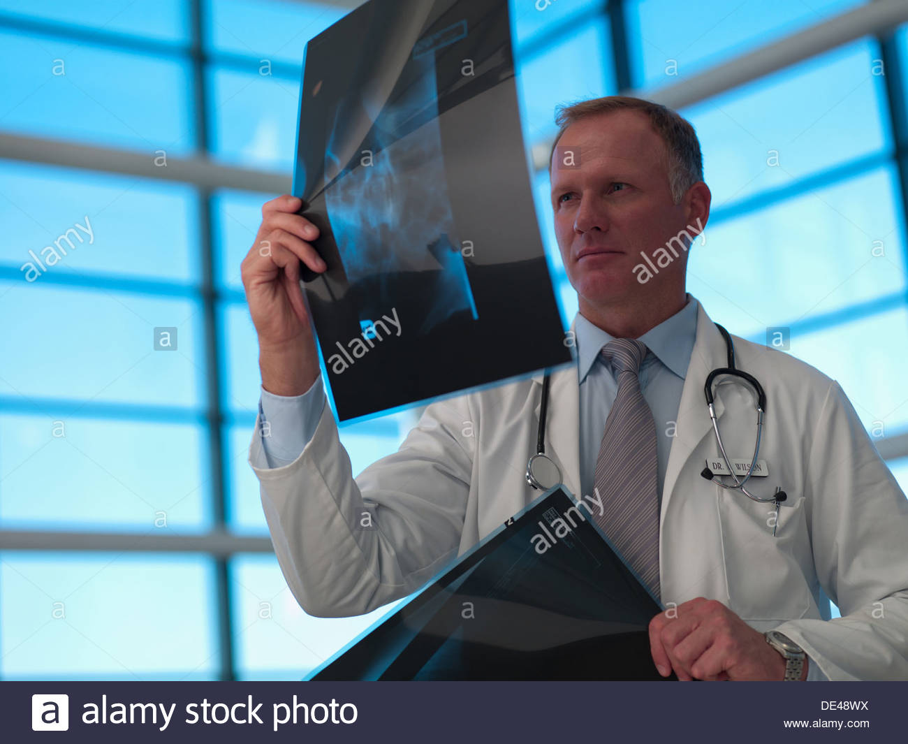 Doctor reviewing x-rays - Stock Image