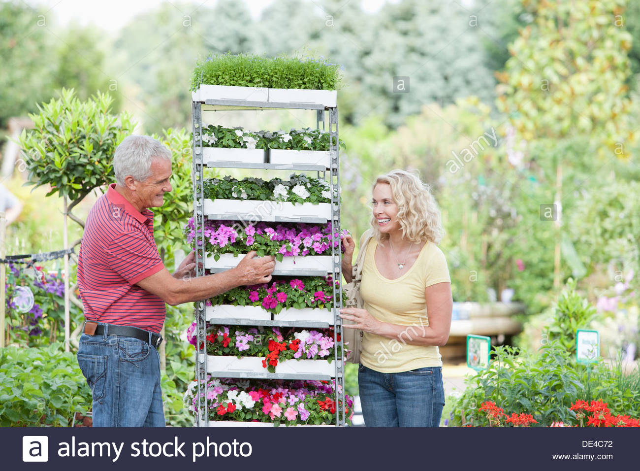Couple shopping for flowers in nursery - Stock Image