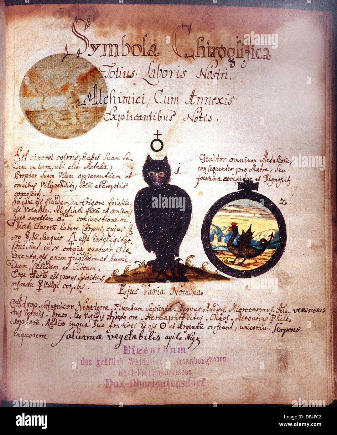 Manuscript Page With Depiction Of The Owl And The Symbol Of Antimony