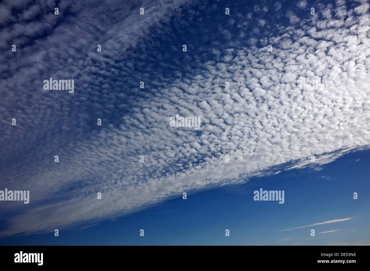 Fluffy clouds or cirrocumulus clouds, Bentin, Rögnitz, Mecklenburg-Western Pomerania, Germany - Stock Image
