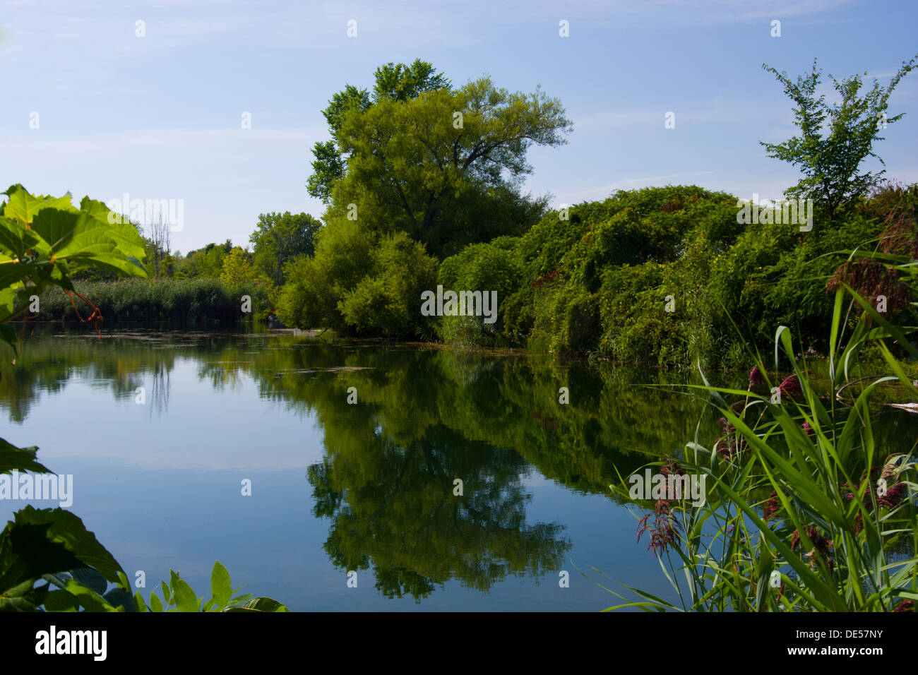 Pond beside the Soulange Canal. - Stock Image