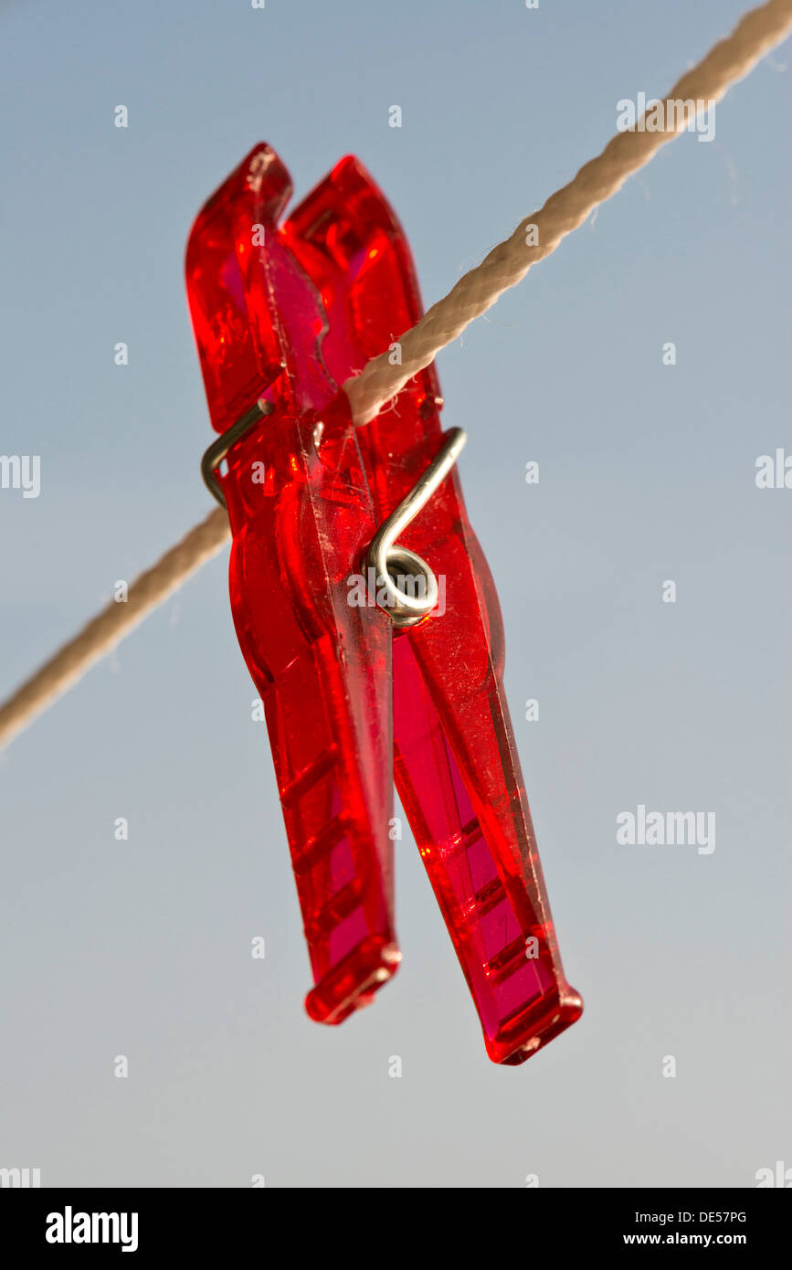Red peg on a clothesline - Stock Image