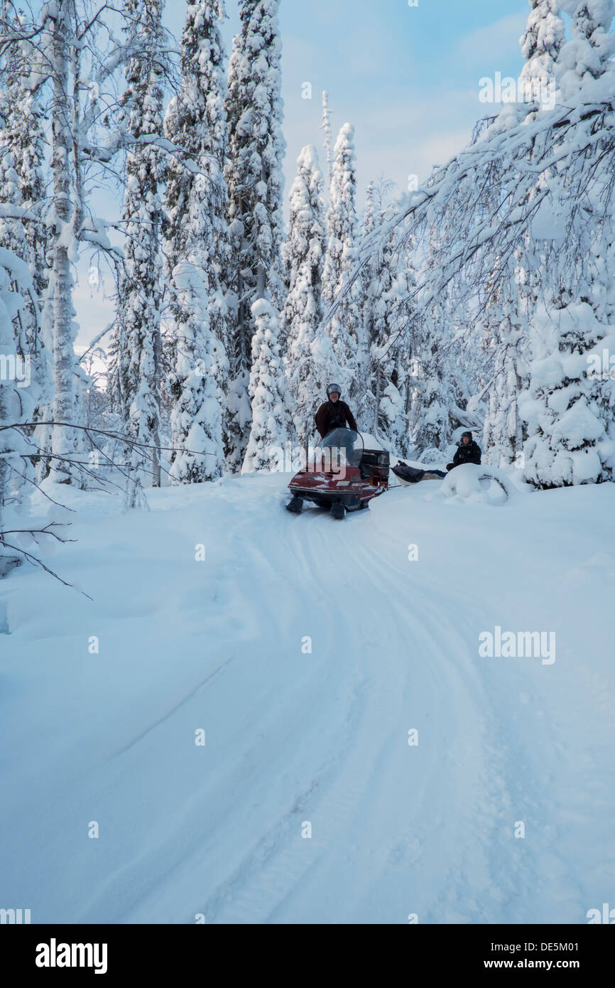A snowmobile tracks through the frozen forests of northern