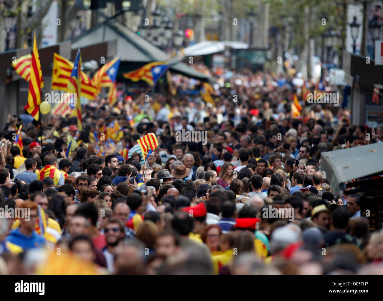 Barcelona, Spain. 11th September 2013. Demonstrators march during The National Day of Catalonia on September 11, 2013 in Barcelona, Spain. The Spanish region of Catalonia has been celebrating its national day known as La Diada amid demonstrations and renewed calls for independence. In an attempt to muster support for secession hundreds of thousands of people have formed a 400km long human chain across the region to press for a vote on independence from Spain. © dpa picture alliance/Alamy Live News - Stock Image
