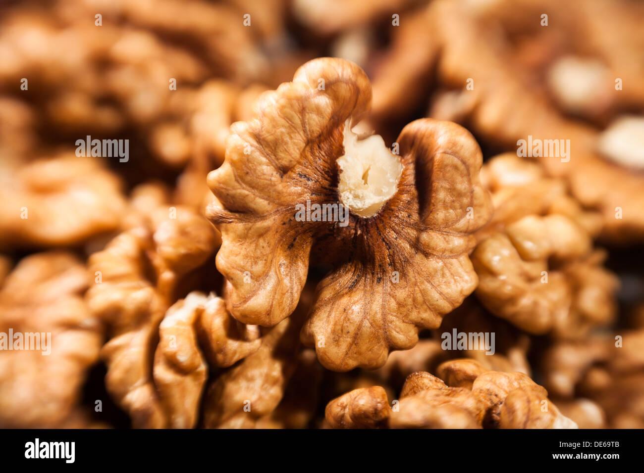 walnut macro closeup half open - Stock Image